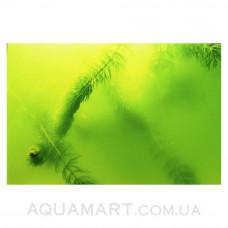 JBL AlgoPond Green 5000 мл на 100000 л